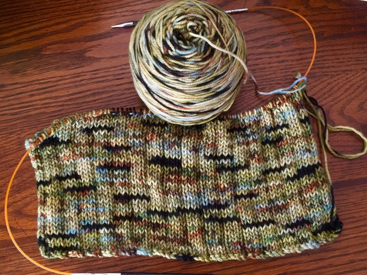 WIP: Kelpie on 80% SW Fine merino/20% Nylon fingering yarn knitting the Codex sweater.